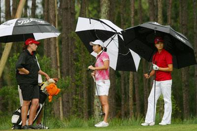 9917278be292 Wholesale Golf Umbrellas, Bulk Golf Umbrellas Manufacturer and Supplier